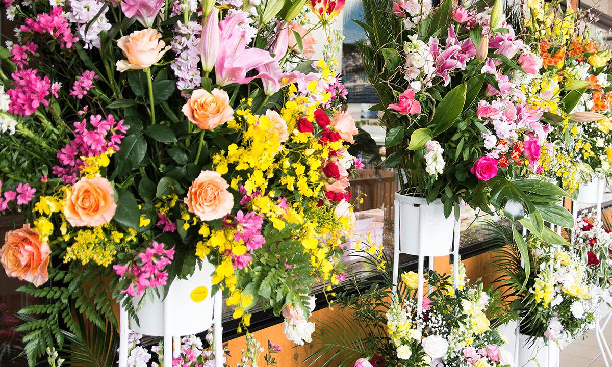 知り合いの開店祝いに花を贈りたい!→「何を贈れば良いの?」